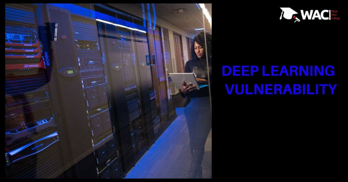 Deep Learning (DL) detection of vulnerability