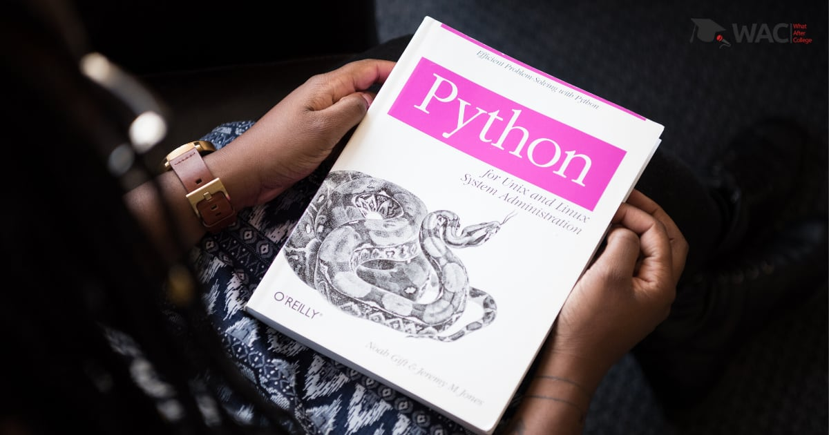 What can be done with Python?