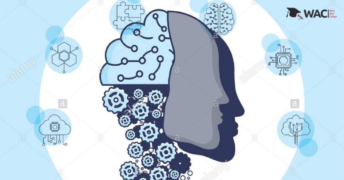 What Are The Companies that use Machine Learning