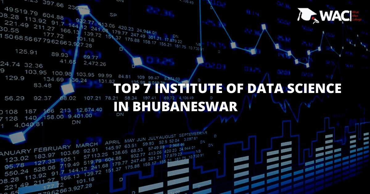 Top 7 Institutes in Bhubaneswar